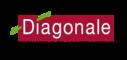 logo de l'agence DIAGONALE