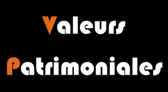 logo de l'agence VALEURS PATRIMONIALES
