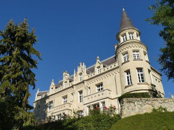 Vente château 13 pièces 480 m2