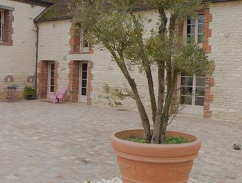 propriété à Troyes (10)