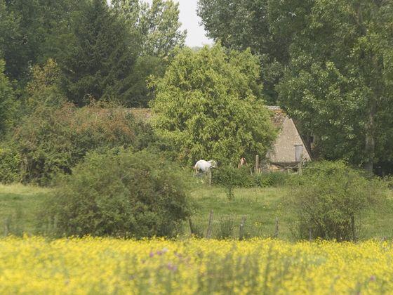 Vente moulin 5 pièces 145 m2