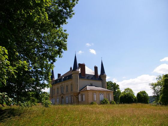 Vente château 15 pièces 650 m2
