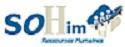 RH TRIUMVIRAT Conseil Rhône-Alpes - SOHIM